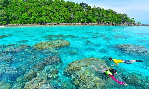 جزیره مرجانی پاتایا